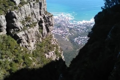 table-mountain-lions-head-5