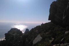 table-mountain-lions-head-7